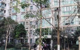 """上海二手房火爆""""围猎""""见闻:房东数小时跳价40万"""